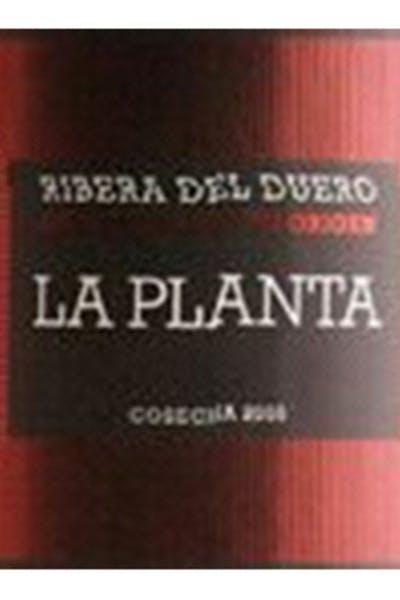 Arzuaga Navarro La Planta