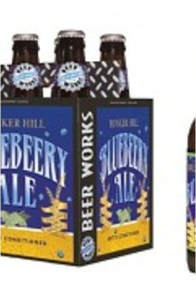 Beer Works Bunker Hill Blueberry