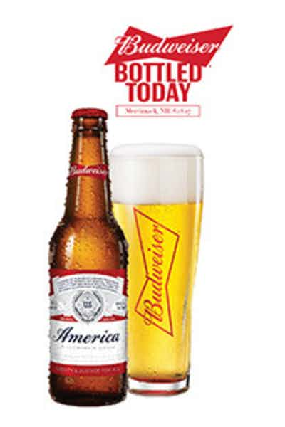 Day fresh budweiser drizly - Budweiser beer pictures ...
